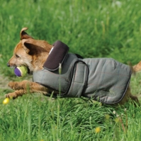 Geaca Weatherbeeta Tweed Dog