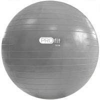 Minge fitness Profit 75 Cm cu Silver DK 2102 pompa