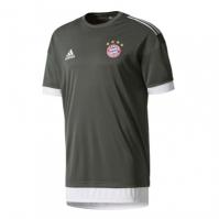 adidas Bayern Munich Europe Training Jersey pentru Barbati