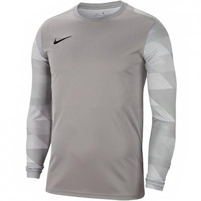 Nike Dry Park IV JSY LS GK gray Portar jersey gray CJ6072 052 Junior