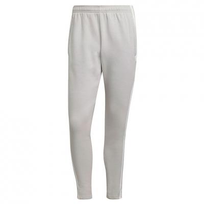 Pantaloni Men's adidas Squadra 21 Sweat light gray GT6644 adidas teamwear