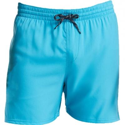 Pantaloni scurti pentru baie Men's Nike Solid blue NESS9502 430