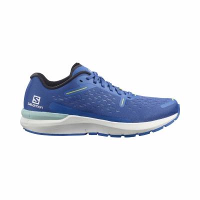 Pantofi Alergare Barbati Salomon SONIC 4 Balance Albastru