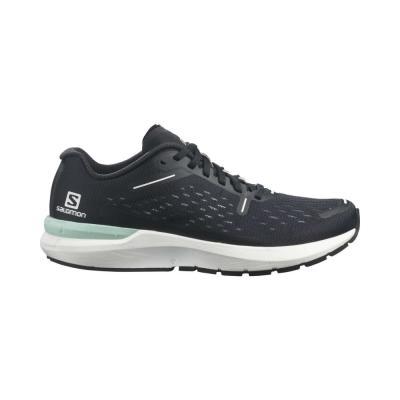 Pantofi Alergare Barbati Salomon SONIC 4 Balance Negru
