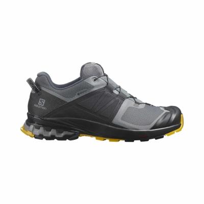 Pantofi Alergare Barbati Salomon XA WILD GTX Gri