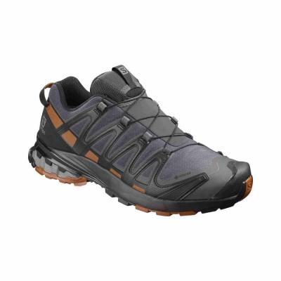 Pantofi Alergare Barbati XA PRO 3D v8 GTX Gri Salomon