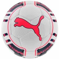 Minge Fotbal Puma Evo Power Futsal 082235 15