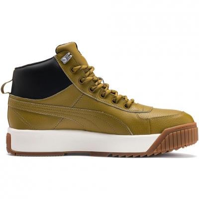 Pantofi sport Puma Tarrenz SB Puretex Men's olive 370552 02