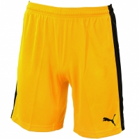 Pantaloni scurti PUMA SMU PLAYING 702557 07