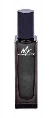 Mr. Burberry - Apa de parfum EDP